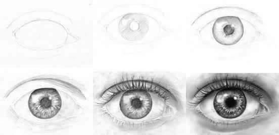 رسم عين وفم ومناخير ووجة بطرية إحترافية بسيطة خطوة بخطوة المعلومة