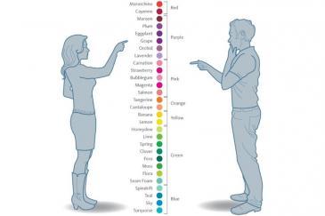 الفرق بين الرجل والمرأة في رؤية الألوان